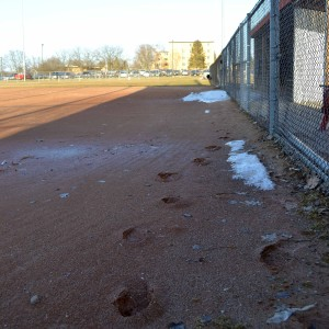 Tuesday UW-Platteville Softball Complex field is too wet to play on, but the team hopes to be able to play their home opener today against Clarke.