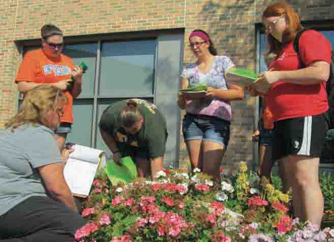 Students in an 8-week herb course studied plants in the Markee Pioneer Student Center garden Monday.  The class is instructed by Greenhouse Manager Dawn Lee, who helped two interns maintain the garden over the summer.