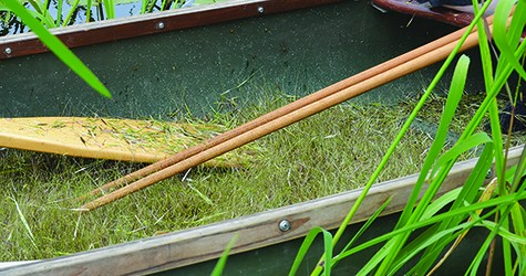 The Ojibwe collect the wild rice by using canoes.