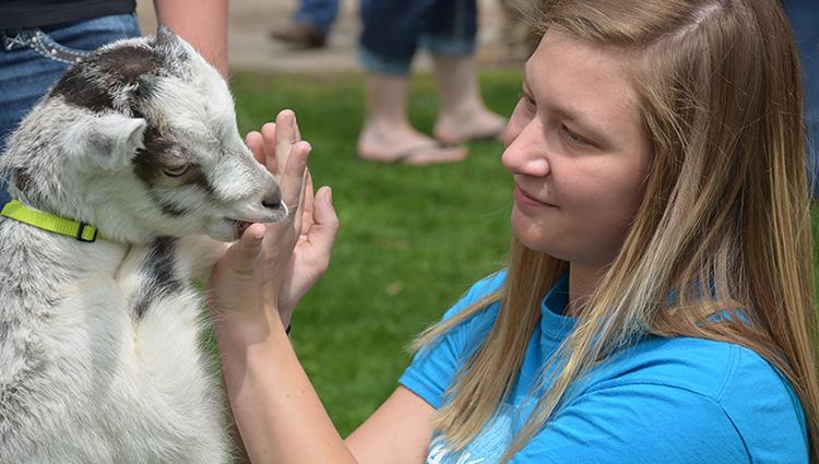 Jenna Meixelsperger, junior animal science major, plays with a goat at UW-Platteville's annual Ag Day. The goats visited campus along with sheep and calves