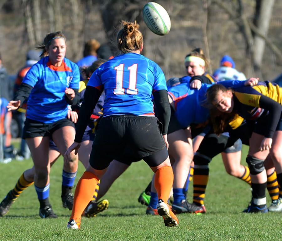 Rugby Tournament Brief