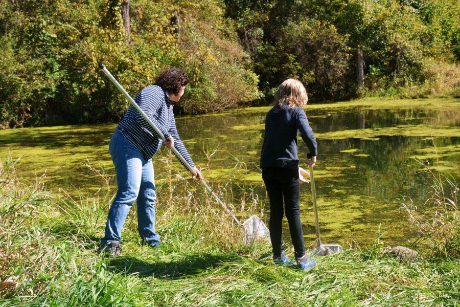 Biology department's BioBlitz inspires community