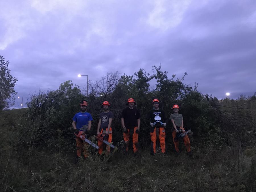 REC+Club+chainsaws+honeysuckle