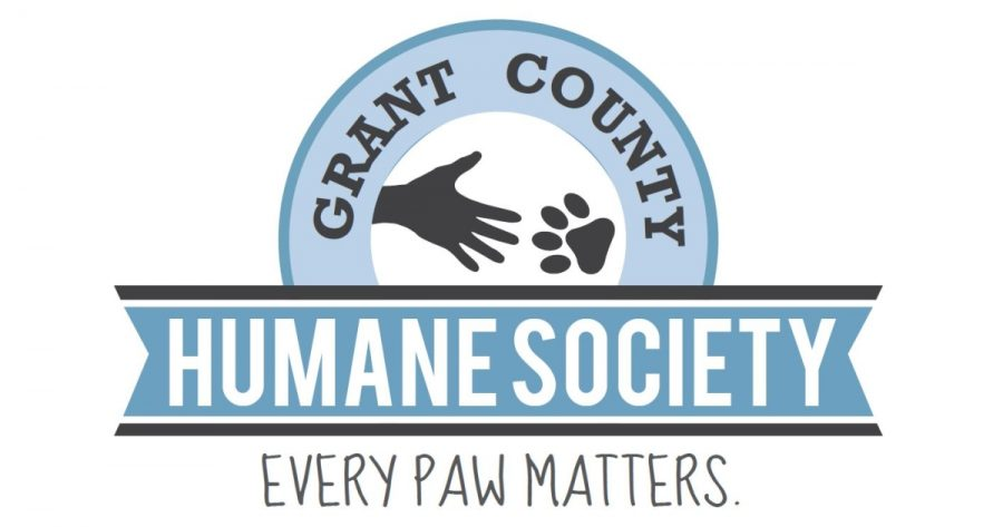 Humane Society looking for student volunteers