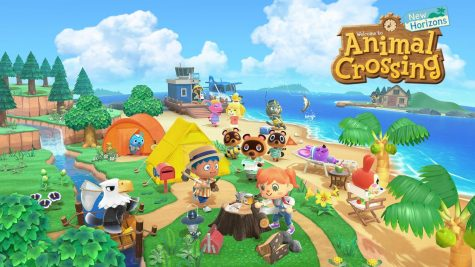 """Animal Crossing: New Horizons"" game review"