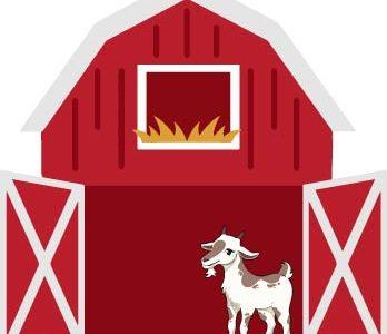Anna Evenson's farm update
